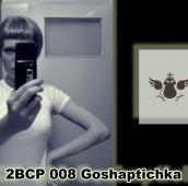 2B Continued Podcast 008 Goshaptichka